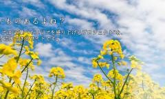 【2/15】「『クラウドファンディング -FAAVO千葉-』~ネットで資金調達~」情報ステーション副代表木村圭佑さん
