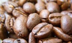 【1/23】船橋で働く人々第9回「コーヒーを淹れる会―船橋珈琲チャンピョンを囲んで」喫茶いずみマスター伊藤拓史さん